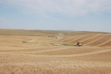 harvesting-in-the-hills-of-1-17